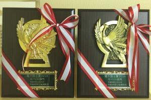 電子国土賞の楯